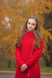 Young pretty woman at the autumn park. Stock Photos