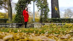 Young pretty woman at the autumn park. royalty free stock images