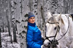 Young pretty woman in a blue jacket and a sports hat for a walk with a white horse in the winter birch forest.  stock photos