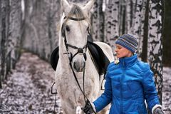 Young pretty woman in a blue jacket and a sports hat for a walk with a white horse. In the winter birch forest royalty free stock photos