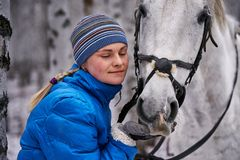 Young pretty woman in a blue jacket and a sports hat for a walk with a white horse. In the winter birch forest stock photo