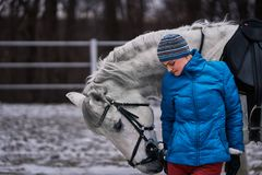 Young pretty woman in blue jacket and sports hat on a walk with a white horse on a winter cloudy day. A horse licks its hands to its owner stock photo