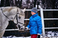 Young pretty woman in blue jacket and sports hat on a walk with a white horse on a winter cloudy day. A horse licks its hands to its owner royalty free stock image
