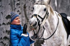 Young pretty woman in a blue jacket and a sports hat for a walk with a white horse. In the winter birch forest royalty free stock image
