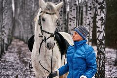 Young pretty woman in a blue jacket and a sports hat for a walk with a white horse. In the winter birch forest stock image