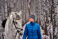 Young pretty woman in a blue jacket and a sports hat for a walk with a white horse. In the winter birch forest royalty free stock photography