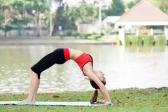 Young pretty woman doing yoga exercises in park Royalty Free Stock Images