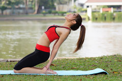 Young pretty woman doing yoga exercises in park Royalty Free Stock Photos