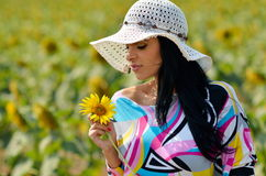 Young pretty woman on field in summer Stock Image
