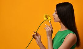 Young pretty woman hold yellow gerbera flower in green dress Royalty Free Stock Photo