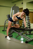 Young pretty woman pumping up muscles with dumbbells Stock Photography