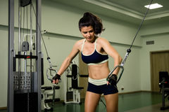Young pretty woman pumping up muscles with training apparatus Royalty Free Stock Photos