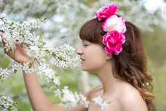 Young pretty woman smell  blooming tree Royalty Free Stock Images