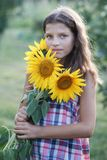 Young pretty woman on a sunflowers Stock Photography