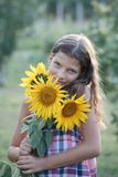 Young pretty woman on a sunflowers Royalty Free Stock Photo