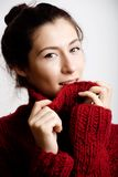 Young pretty woman in sweater and scarf all over Stock Photography
