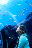 Young pretty woman watching fishes in a tropical aquarium. Young pretty caucasian woman with long curly brunette hair in green sweater watching fishes in a royalty free stock images