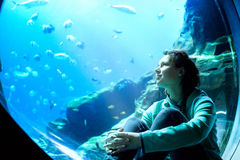 Young pretty woman watching fishes in a tropical aquarium. Young pretty caucasian woman with long curly brunette hair in green sweater watching fishes in a stock photos
