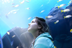 Young pretty woman watching fishes in a tropical aquarium. Young pretty caucasian woman with long curly brunette hair in green sweater watching fishes in a royalty free stock photos