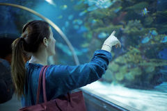 Young pretty woman watching fishes in a tropical aquarium Royalty Free Stock Images