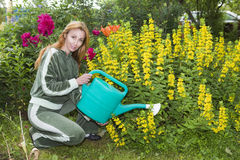 Young pretty woman waters flowers on garden Royalty Free Stock Images