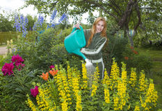Young pretty woman waters flowers on garden royalty free stock photos