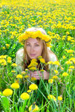 Young pretty woman in wreath of dandelions in the Stock Photos