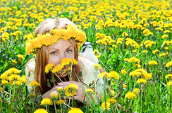 Young pretty woman in wreath of dandelions Royalty Free Stock Photography