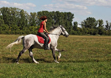 Young pretty women galloping horseback Royalty Free Stock Photography