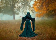Free Young Priestess Holds A Secret Rite Of Sacrifice, Is Alone In The Autumn Forest On A Large Glade With Fallen Orange Stock Image - 136000321