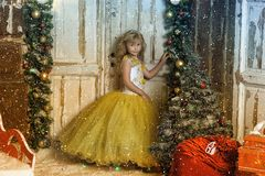 Young princess in a smart dress in christmas royalty free stock images