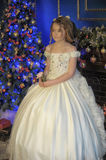 Young princess in a white evening dress Stock Images