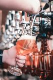 Young professional barman filling glasses of clients with craft beer. Young barman. Young professional barman feeling very busy while filling glasses of clients stock images