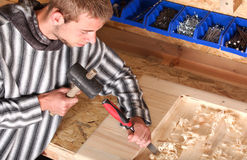 Young professional carpenter Royalty Free Stock Photography