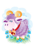 The young ram Royalty Free Stock Image