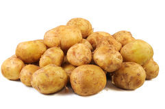 Young raw potato a Royalty Free Stock Images