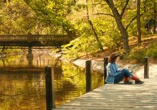 Young reading woman. Lonely young woman reads a book on a wooden bridge Stock Images