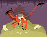 Young red dragon. Royalty Free Stock Images