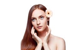 Young red-haired female with gerbrera flower in ha. Horizontal studio beauty portrait of young attractive green-eyed red-haired caucasian female with beige stock photos