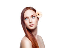 Young red-haired green-eyed female with flower. Horizontal studio beauty portrait of young attractive red-haired green-eyed caucasian female with gorgeous long Royalty Free Stock Images