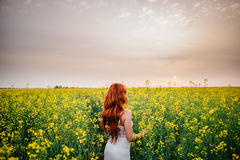Young red-haired woman in a rapeseed field Royalty Free Stock Photography