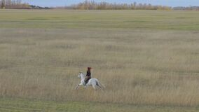 A young red-haired woman is riding a white horse. Gallop across the field.