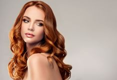 Red haired woman with voluminous, shiny and curly hairstyle.Flying hair. Young red haired woman with voluminous, shiny and wavy hair. Beautiful model with long royalty free stock photography