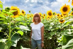 Woman in a sunflower. A young red-haired woman in a white T-shirt and jeans smiles and enjoys a summer walk in a sunflower field against a blue sky on a warm royalty free stock photos