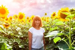 Woman in a sunflower. A young red-haired woman in a white T-shirt and jeans smiles and enjoys a summer walk in a sunflower field against a blue sky on a warm stock photo