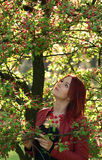 Young redhead woman standing in the cherry blossom Royalty Free Stock Photos