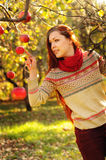 Young redheaded woman with long straight hair in the apple garde. N picking up the apples Royalty Free Stock Photos