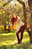 Young redheaded woman with long straight hair in the apple garde. N picking up the apples Stock Images