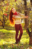 Young redheaded woman with long straight hair in the apple garde. N picking up the apples Royalty Free Stock Images