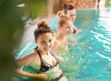 Young relaxed women in the swimming pool. Three young relaxed women in the swimming pool Royalty Free Stock Photography